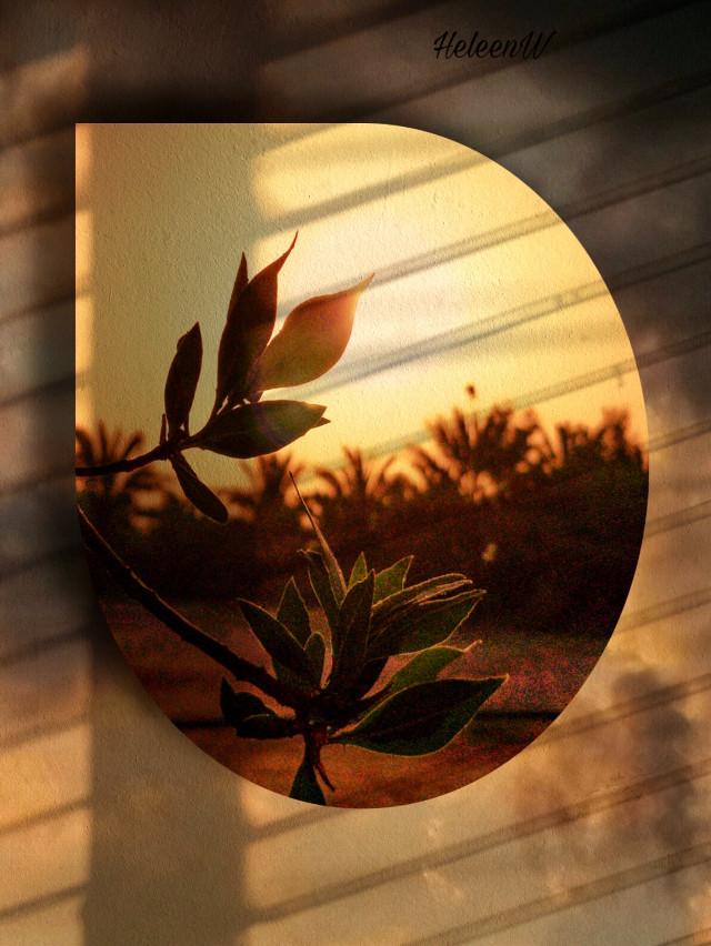 #sunset #fantasy #shadoweffect #shadowmask #imagination #myedit #goldenhour #sun #creative #cutouttool #myedit #freetoedit