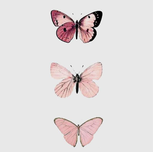 #freetoedit #pink #butterflys