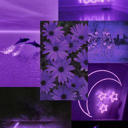 aestheticwallpaper purple backgroundaesthetic freetoedit
