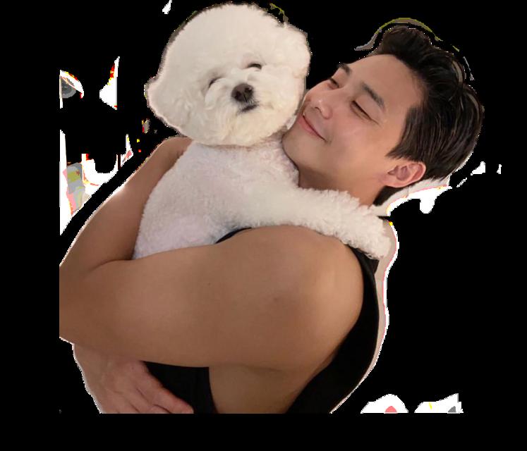 #freetoedit #parkseojoon #kdrama #cute #actor #kawaii #dog