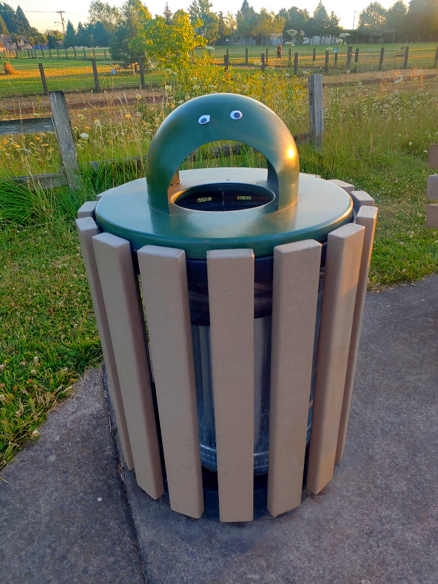 We put googly eyes on the trash can at the park last night. But I've been wondering, is it still considered defacing public property, when it's literally the opposite of that? Haha😂😉 #eyes #trashcan #garbagecan #face #silly #stupid #freetoedit