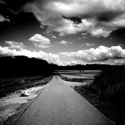 freetoedit clouds blackandwhite landscape pathway