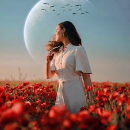 prettywoman sunset flowers planet birds freetoedit ftestickers