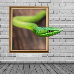 frame snake wall threedimensional orient_arts freetoedit ftestickers