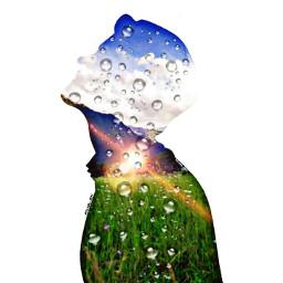 freetoedit grass green nature rain