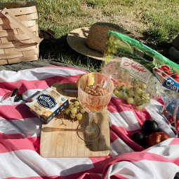 freetoedit picnic summer nature food