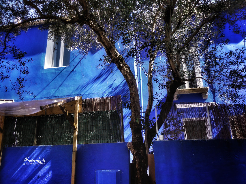 #bluehouse #photography #architecture