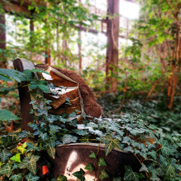 freetoedit photography lostplace abandoned architecture