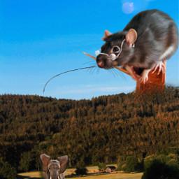 freetoedit mouse elephant lovelive nature