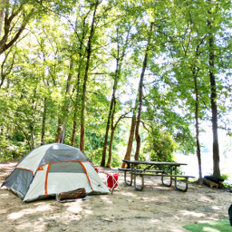 freetoedit summervibes outdoors nature camping