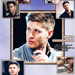 freetoedit jensenackles spn supernaturaledit jensenacklesedit