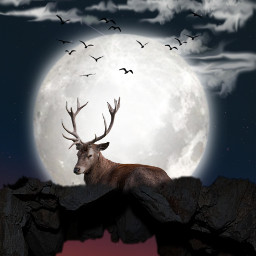 freetoedit deer moon supermoon surreal surrealism myedit editedbyme mountain nightsky madewithpicsart animal araceliss