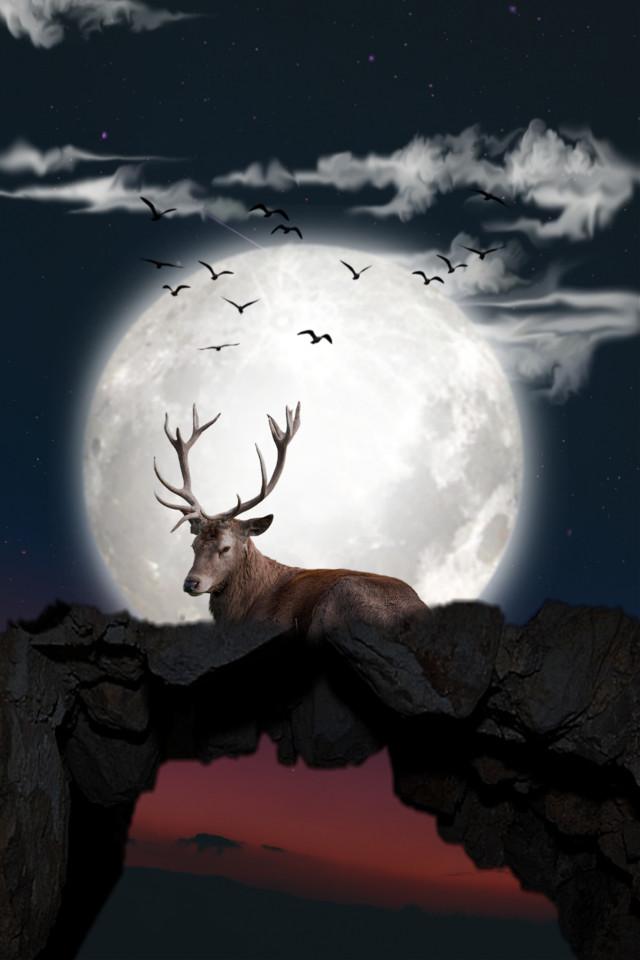 Good night 🙋♀️  #freetoedit #deer #moon #supermoon #surreal #surrealism #myedit #editedbyme #mountain #nightsky #madewithpicsart #animal #araceliss