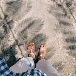 freetoedit summervibes vacation