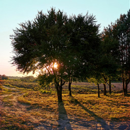 freetoedit sunset evening goldenhour sun