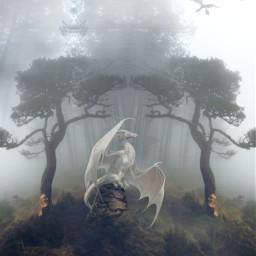 freetoedit vipshoutout fantasy dragon surreal