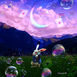 freetoedit myedit myart whiterabbit aliceinwonderland