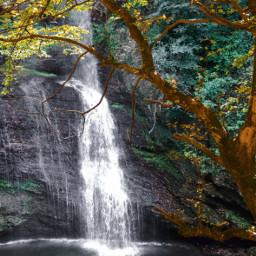 freetoedit photography nature falls scenary
