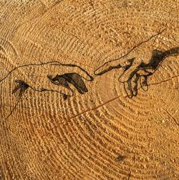 wood wooden hands hand handdrawn freetoedit