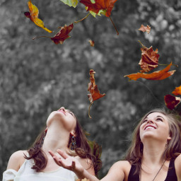 autumn foliage colorsplash colorsplasheffect blackandwhite freetoedit ftestickers