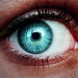 freetoedit eyecloseup blueeye blue