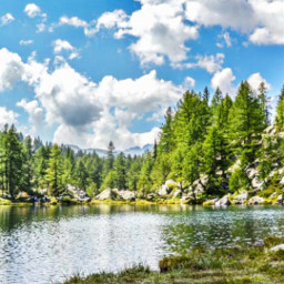 freetoedit summer summervibes nature naturelover panorama myedit view lake forest woods happy happiness adventure canoe clouds summertime panoramaview