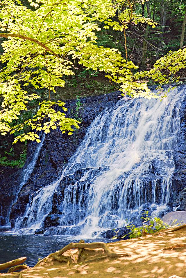 #freetoedit #naturephotograpy #smallwaterfall #trees #shades #sunnymorning Happy Friday 😀