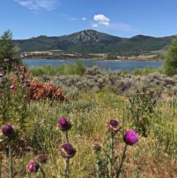 freetoedit nature lakeside mountainlife
