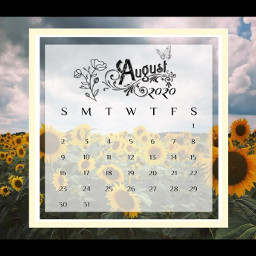 freetoedit calender august sunflower sunflowers sunflowers🌻💛🌻 yellow work days bright fun tool daysoftheweek payday