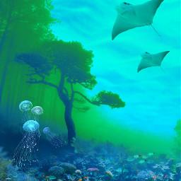 vipshoutout surreal photomanipulation curvestool edited underwater madewithpicsart freetoedit