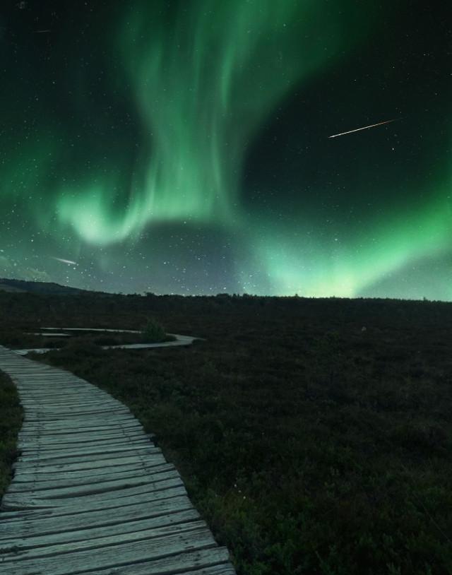 #marshland #myphotography #rhön #germany #northernlights #unsplash #dreamscape #photography #nature #green #shootingstars #stars #sky #wood #amazing #lights #freetoedit #madewithpicsart #icyx #remixit @picsart @freetoedit