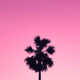 background aesthetic remixit sky beach pink remixme unsplash remixed freetoedit