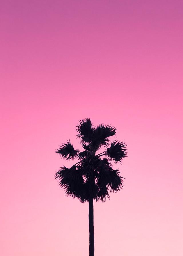 #background #aesthetic #remixit #sky #beach #sky #pink #remixme #unsplash #remixed #freetoedit