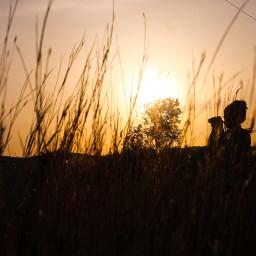 freetoedit summer sunset photography picoftheday