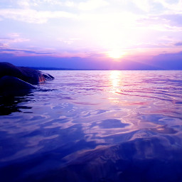 august summer lakeofconstance bodensee altenrhein sky water