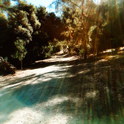 sunbeams trails hikelife nature hikingadventures caligirl pathfinder mood followme love mymind myeye bchez photography edit
