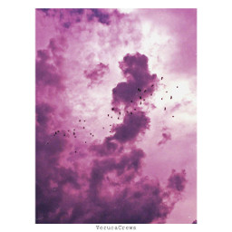 photography clouds cottoncandy freetoedit cottonsky pinkclouds birds