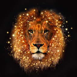 freetoedit lion leo zodiac leozodiac edit nature photography animal belgium picsart glitter red orange yellow warmcolors leoseason