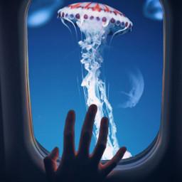 freetoedit sea window plane hand jellyfish blue galaxy beauty be_creative art myedit