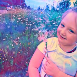 freetoedit wildflower mymini photography amaturephotographer photooftheday