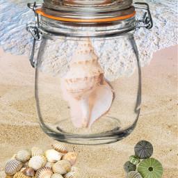 freetoedit sand ocean oceanwaves shells jar conchshell shellinjar beach summer seatreasureremixchallenge ircseatreasure seatreasure