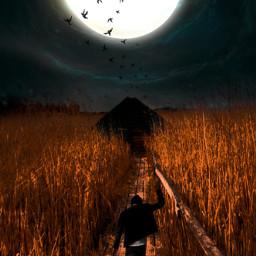 freetoedit myedit loveit moon surreal