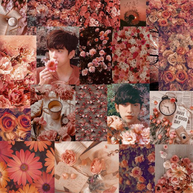 """✨Jinyoung and Flowers✨  In this post: Name : Park Jinyoung Nicknames : Jirongie, Peach Group : GOT7 Fandom Name : IGOT7 (Ahgase A.K.A. the bird fandom) Fandom Color : Green and White  Other Info : Mom of the group; savage; middle child; used to be in JJP(with JB); shipped with all members; wants to kill Yugyeom; book lover!!; SAVAGE; it's Jinyoung, not Junior thank you; necklace says can't take it when I'm gone; hates Clare Berry Kate; """"don't kill Yugyeom? Aniyo. I will kill Yugyeom""""; friends with DAY6 Wonpil; did I mention savage?  You may see a lot of GOT7 realated posts because they are my Ults and a lot of Jinyoung too since he's my Ultimate bias. Hope you liked it!!! Sincerely,                a Dysfunctional Ahgase💚 #freetoedit #got7 #peach🍑 #jinyoung_got7 #parkjinyoung #flowers #dysfunctional #ahgase #birdfandom   <3"""