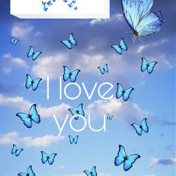 bluebutterfly iloveyou bluesky wednesday freetoedit