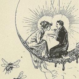 love freetoedit bee moon wedding romantic antique