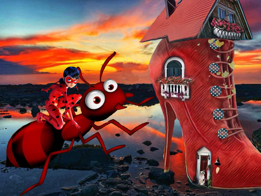 #freetoedit#red#shoe#ant#insect#girl#sunset#fantasy#surreal#