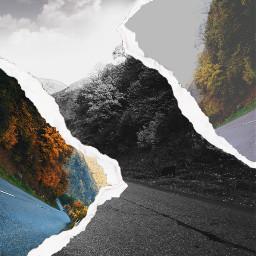 freetoedit roadtoheaven road forestroad