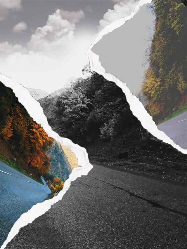 #freetoedit #roadtoheaven #road #forestroad