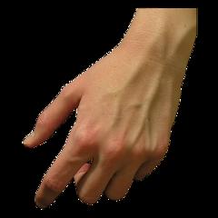 рука мужчина пальцы мужская мужскаярука мужчины мужскаяладонь мужскиепальцы ладонь ладони ладошка ладошки руки hand hands arms arm men милота обнимажки человек человеческаярука freetoedit