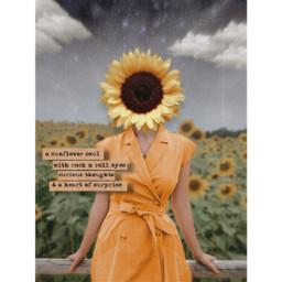 replay madewithpicsart vintage freetoedit aesthetic sunflower photomanipulation photoart antiselfie